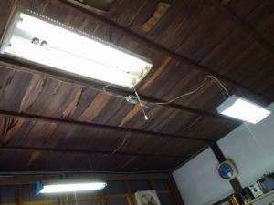 天井照明は蛍光灯